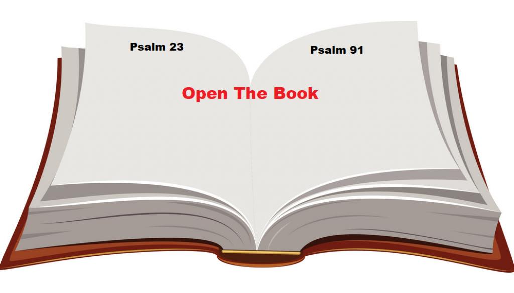 open-book-vector-198005